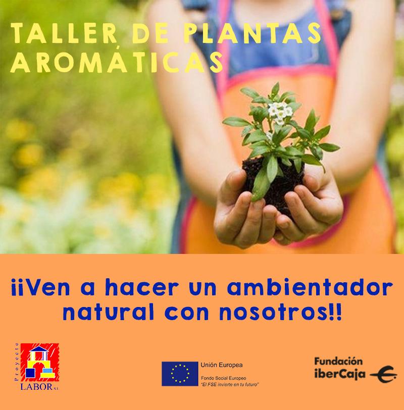 Taller de plantas aromáticas en el Centro Cultural Ibercaja de Guadalajara
