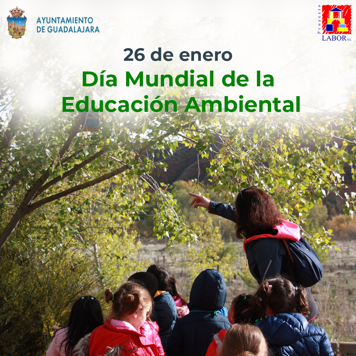 dia mundial de la educacion medioambiental
